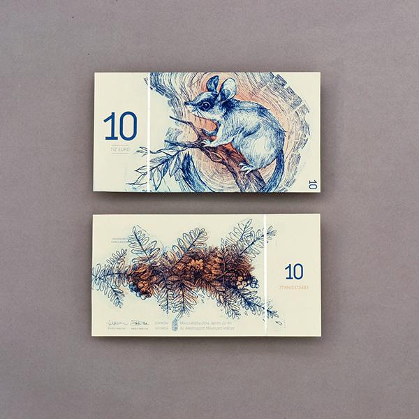 redizajn bankoviek euro barbara bernat 3digital (4)