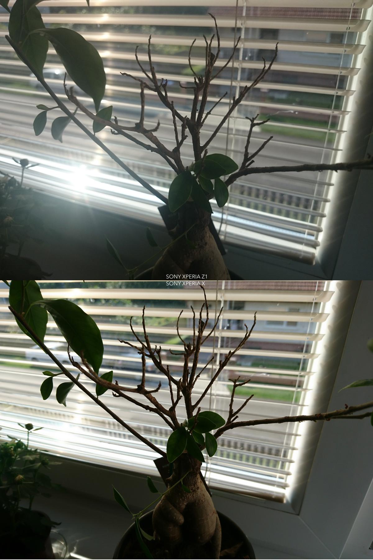 Fototest Sony Xperia Z1 vs Sony Xperia X